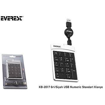 Everest KB-2017 Grý/Siyah Usb Numerik Klavye