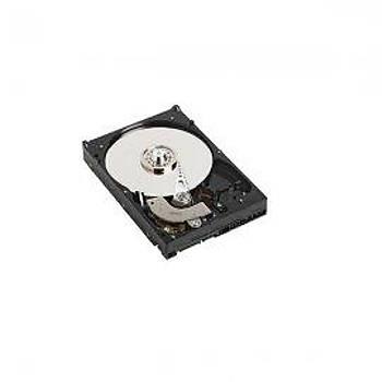 Dell 400-AUST 2 TB 7200Rpm SATA 6Gbps 512n 3.5 inch Sunucu Harddisk